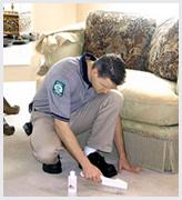 Carpet Stretching and Repair